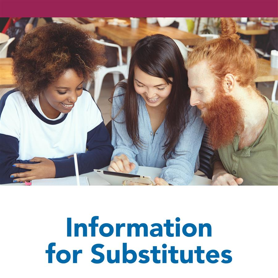 Information for Substitutes