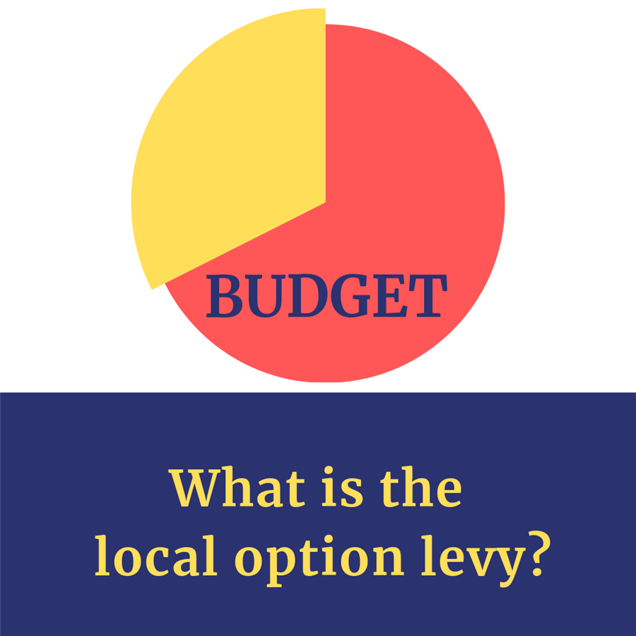 What is the local option levy?