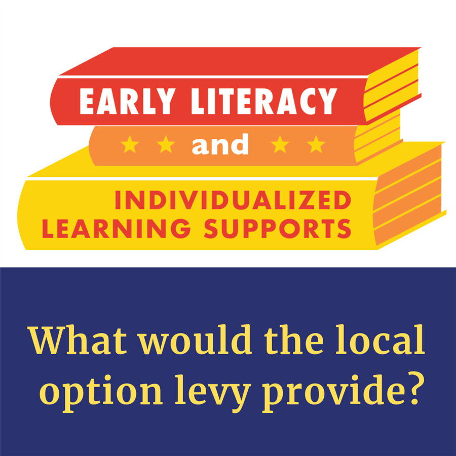 What would the local option levy provide?