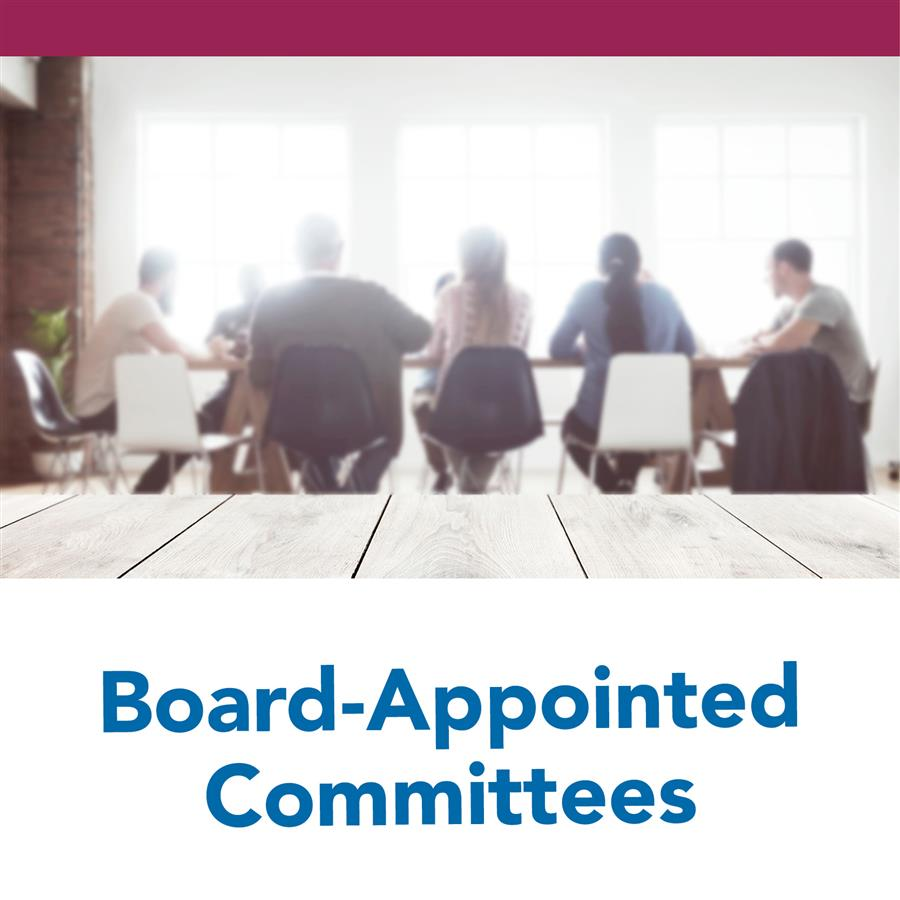 Board-Appointed Committees