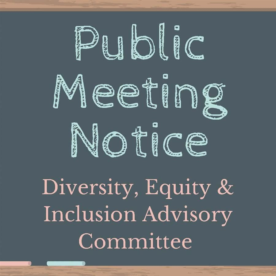 Public Meeting Notice - Diversion, Equity & Inclusion Committee Meeting