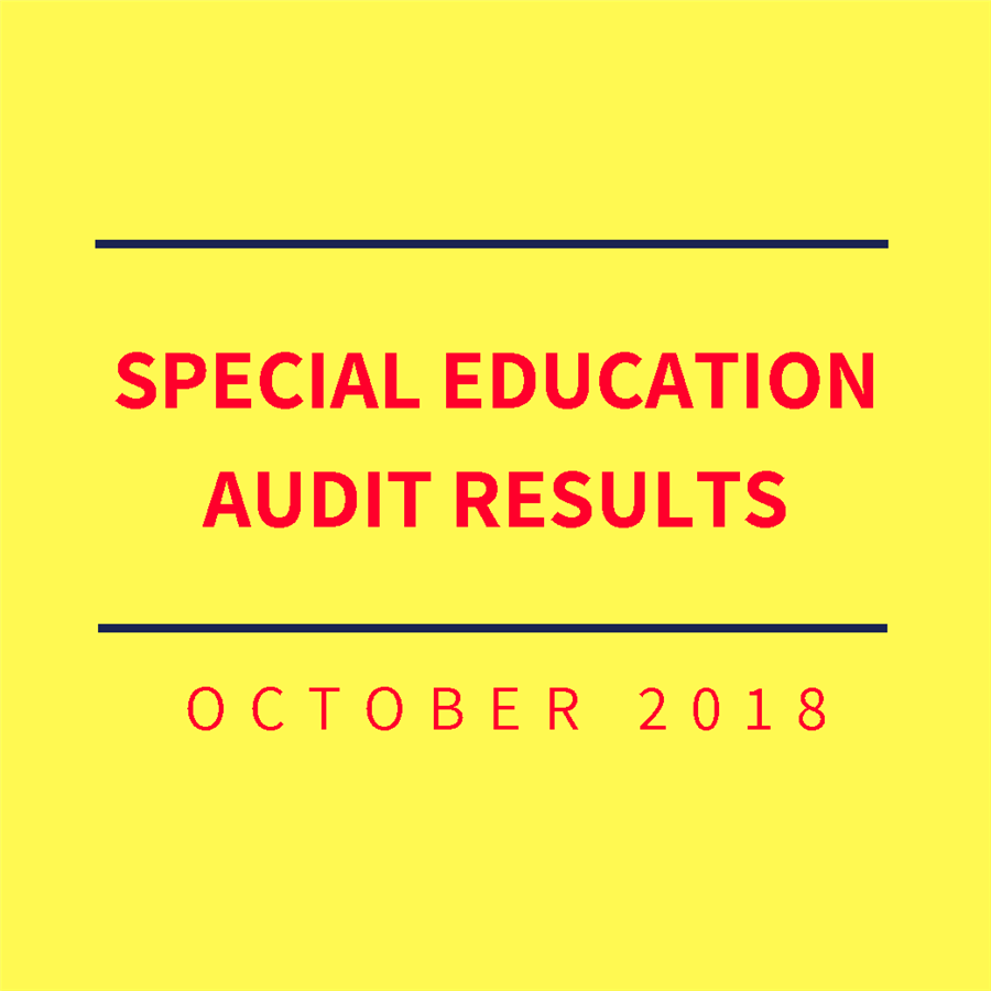 Special Education Audit Results