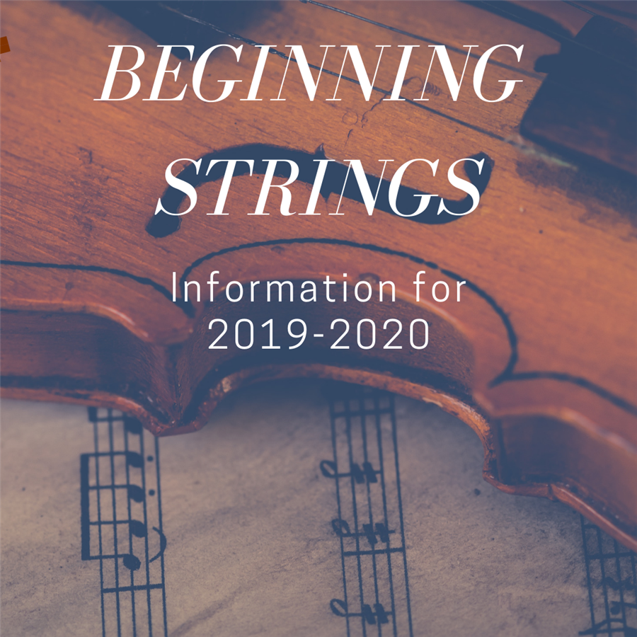 Beginning Strings